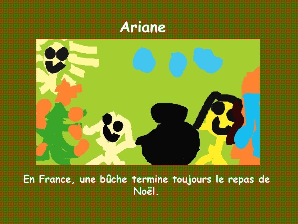 Ariane En France, une bûche termine toujours le repas de Noël.