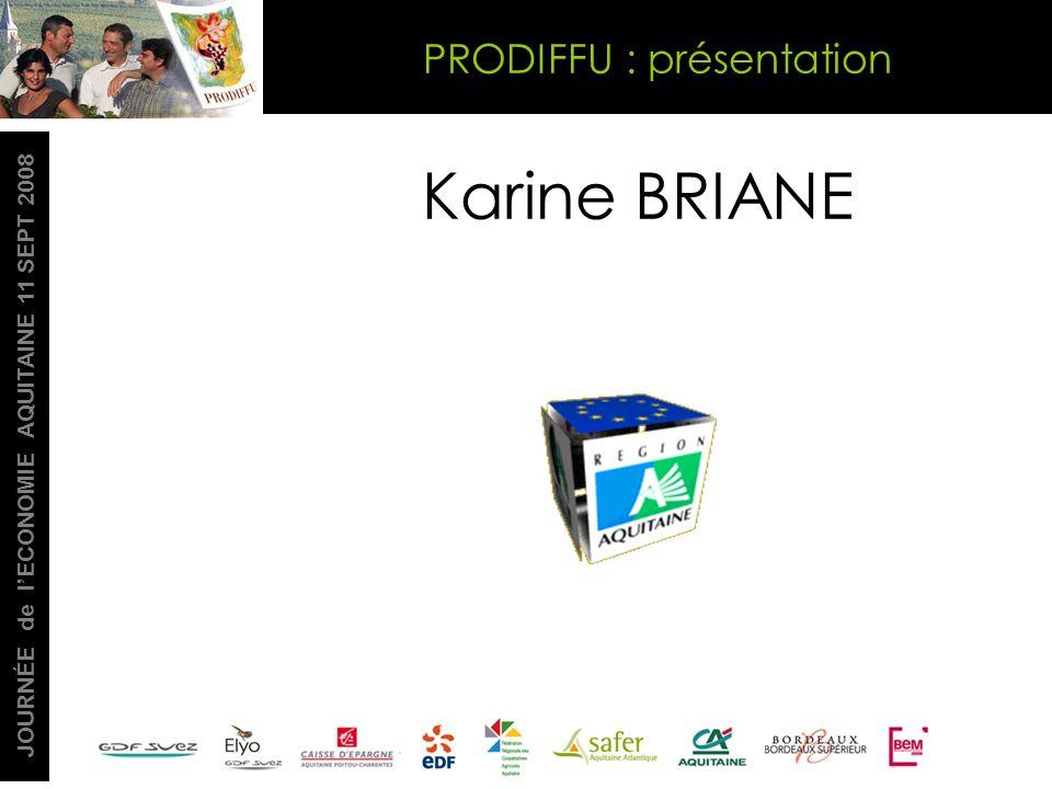 JOURNÉE de lECONOMIE AQUITAINE 11 SEPT 2008 Karine BRIANE PRODIFFU : présentation
