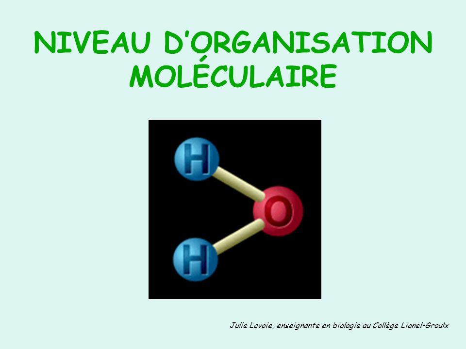 NIVEAU DORGANISATION MOLÉCULAIRE Julie Lavoie, enseignante en biologie au Collège Lionel-Groulx