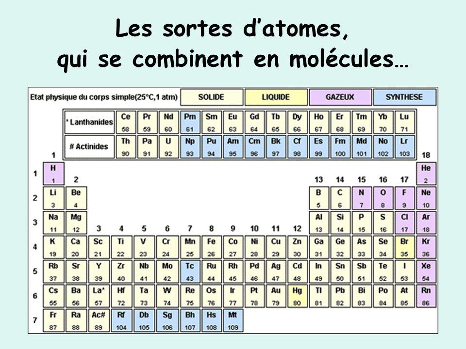 Les sortes datomes, qui se combinent en molécules…