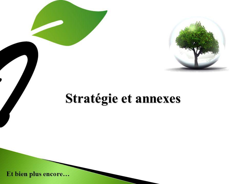 Et bien plus encore… Stratégie et annexes