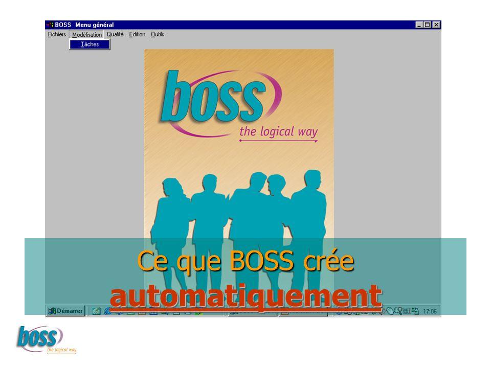 Ce que BOSS crée automatiquement automatiquement