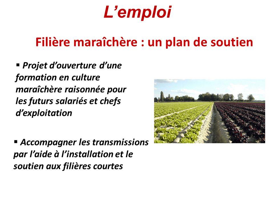 Filière viticole : résister à la concurrence Aide à la promotion et à la commercialisation Prévention plutôt que prohibition Lemploi