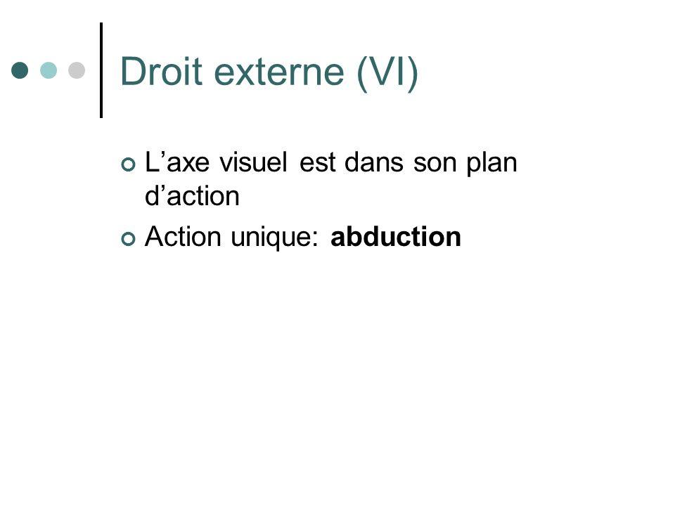 Droit externe (VI) Laxe visuel est dans son plan daction Action unique: abduction