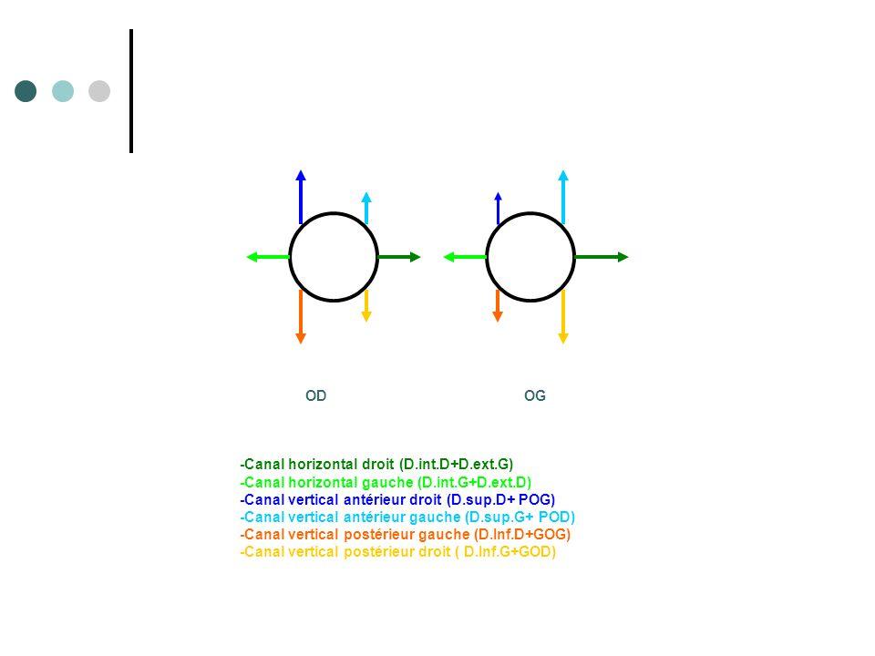 OD OG -Canal horizontal droit (D.int.D+D.ext.G) -Canal horizontal gauche (D.int.G+D.ext.D) -Canal vertical antérieur droit (D.sup.D+ POG) -Canal verti