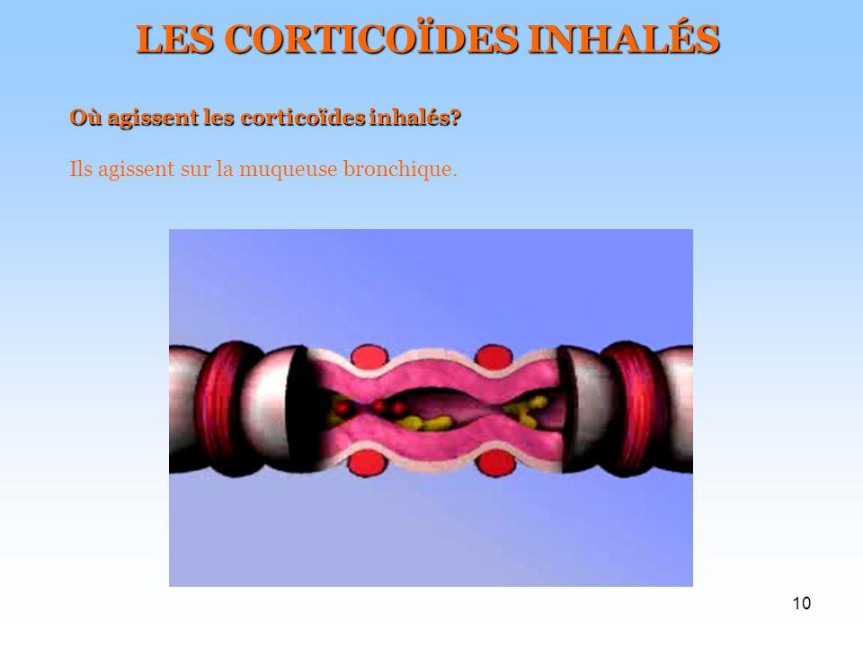 10 LES CORTICOÏDES INHALÉS Où agissent les corticoïdes inhalés? Ils agissent sur la muqueuse bronchique.