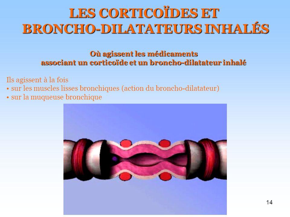 14 LES CORTICOÏDES ET BRONCHO-DILATATEURS INHALÉS BRONCHO-DILATATEURS INHALÉS Où agissent les médicaments associant un corticoïde et un broncho-dilatateur inhalé Ils agissent à la fois sur les muscles lisses bronchiques (action du broncho-dilatateur) sur la muqueuse bronchique