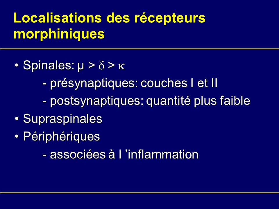 Localisations des récepteurs morphiniques Spinales: µ > >Spinales: µ > > - présynaptiques: couches I et II - postsynaptiques: quantité plus faible Sup