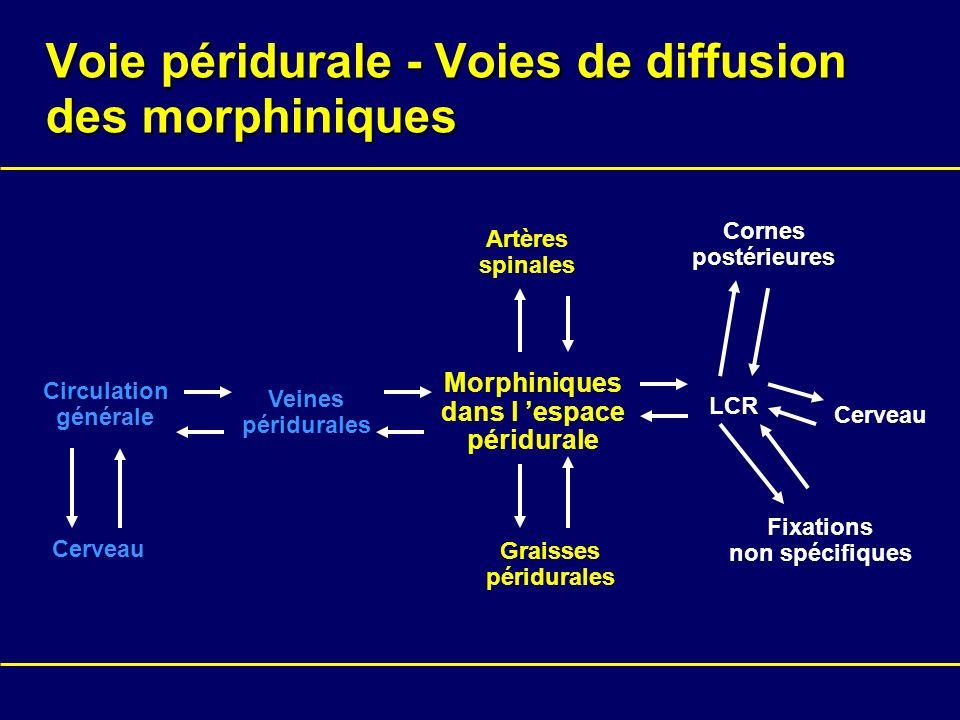 Voie péridurale - Voies de diffusion des morphiniques Morphiniques dans l espace péridurale LCR Artères spinales Graisses péridurales Veines péridural