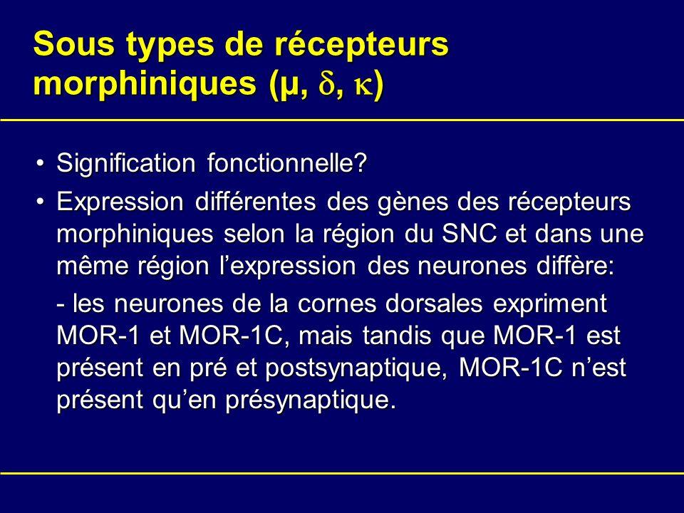 Sous types de récepteurs morphiniques (µ,, ) Signification fonctionnelle?Signification fonctionnelle? Expression différentes des gènes des récepteurs
