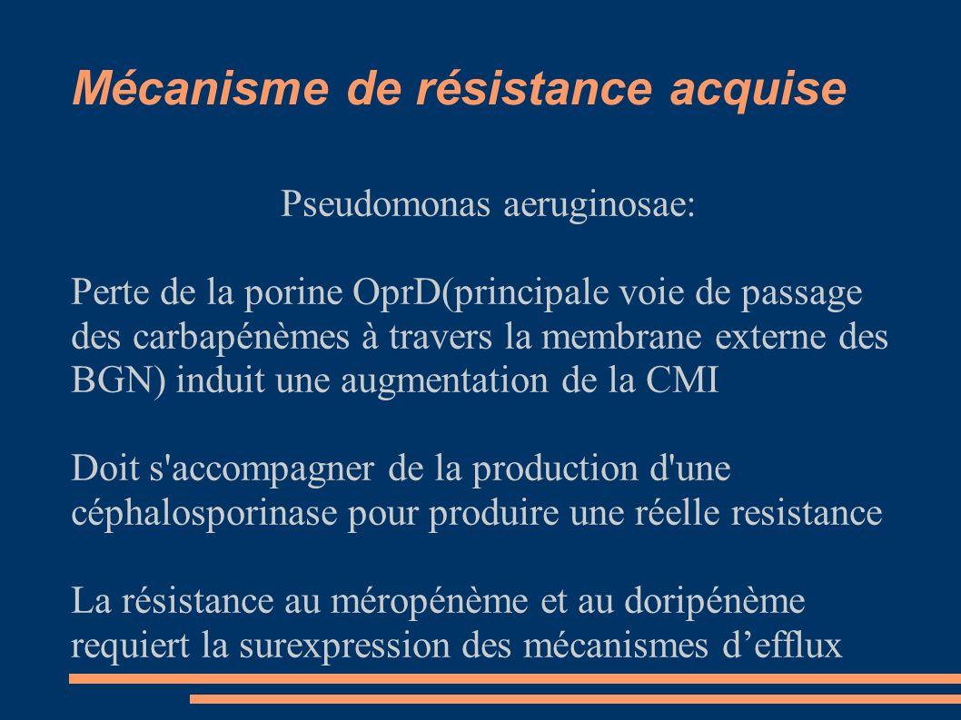 Mécanisme de résistance acquise Pseudomonas aeruginosae: Perte de la porine OprD(principale voie de passage des carbapénèmes à travers la membrane externe des BGN) induit une augmentation de la CMI Doit s accompagner de la production d une céphalosporinase pour produire une réelle resistance La résistance au méropénème et au doripénème requiert la surexpression des mécanismes defflux