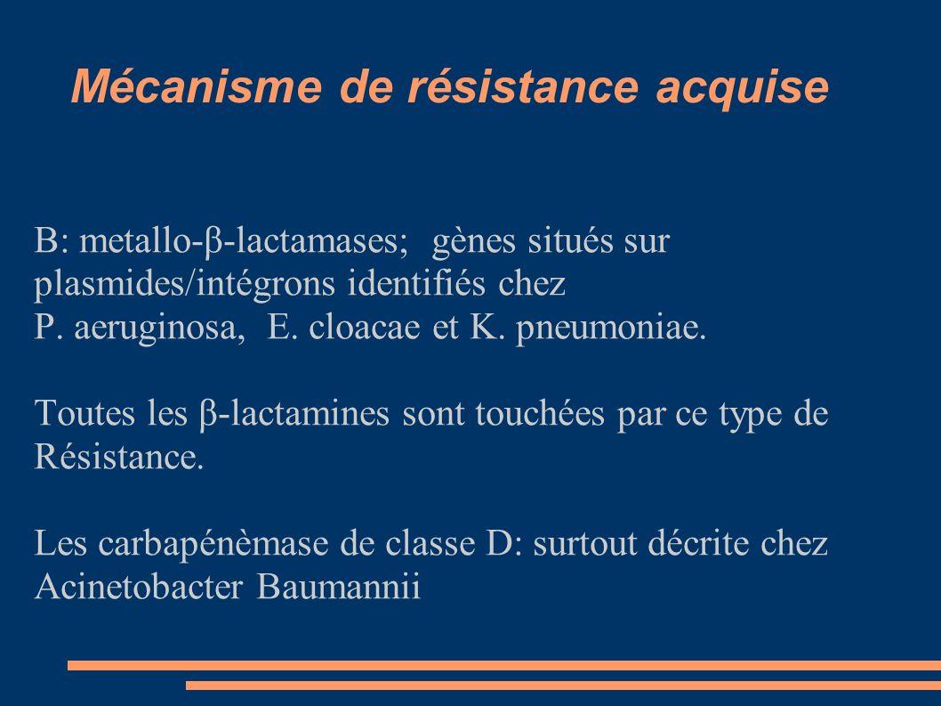 Mécanisme de résistance acquise B: metallo-β-lactamases; gènes situés sur plasmides/intégrons identifiés chez P. aeruginosa, E. cloacae et K. pneumoni