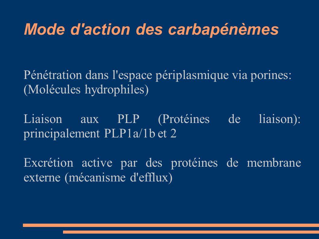 Mode d action des carbapénèmes Pénétration dans l espace périplasmique via porines: (Molécules hydrophiles) Liaison aux PLP (Protéines de liaison): principalement PLP1a/1b et 2 Excrétion active par des protéines de membrane externe (mécanisme d efflux)