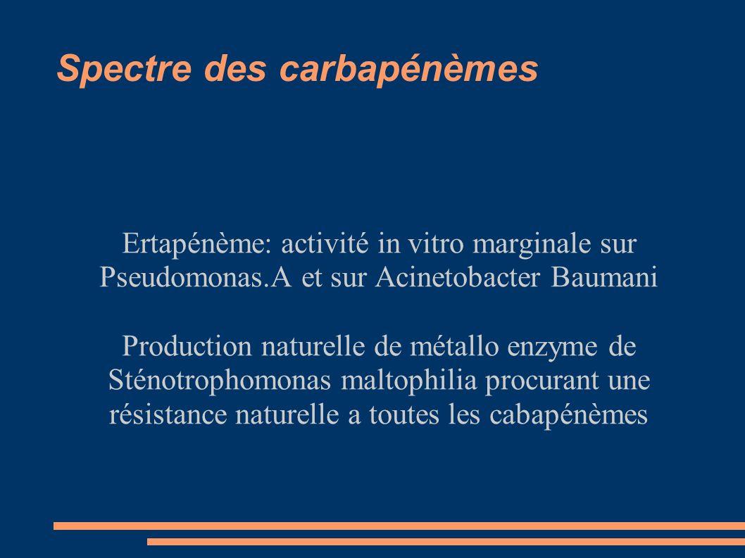 Ertapénème: activité in vitro marginale sur Pseudomonas.A et sur Acinetobacter Baumani Production naturelle de métallo enzyme de Sténotrophomonas maltophilia procurant une résistance naturelle a toutes les cabapénèmes
