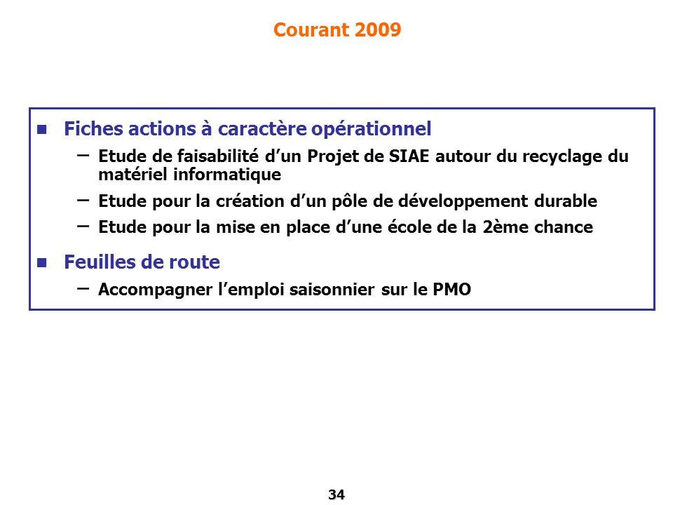 34 Courant 2009 Fiches actions à caractère opérationnel – Etude de faisabilité dun Projet de SIAE autour du recyclage du matériel informatique – Etude