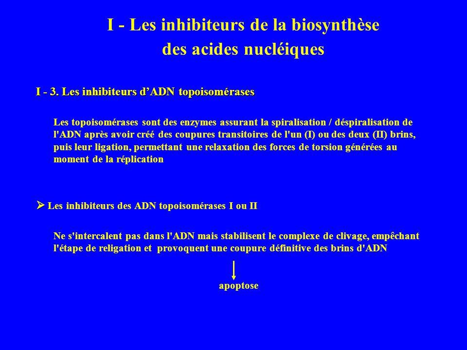 I - Les inhibiteurs de la biosynthèse des acides nucléiques I - 3.