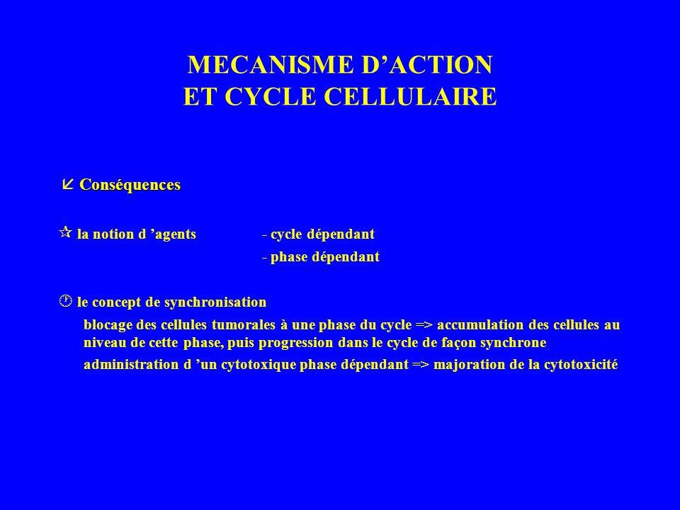 MECANISME DACTION ET CYCLE CELLULAIRE Conséquences la notion d agents- cycle dépendant - phase dépendant le concept de synchronisation blocage des cellules tumorales à une phase du cycle => accumulation des cellules au niveau de cette phase, puis progression dans le cycle de façon synchrone administration d un cytotoxique phase dépendant => majoration de la cytotoxicité