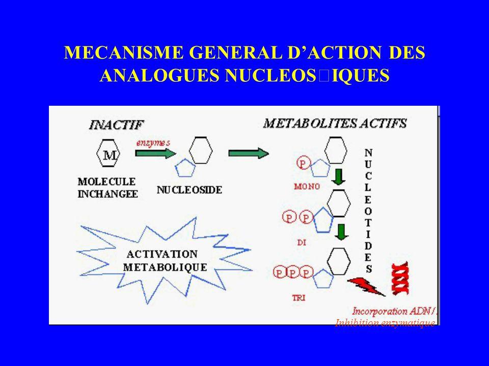 MECANISME GENERAL DACTION DES ANALOGUES NUCLEOSIQUES Inhibition enzymatique