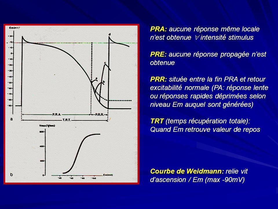 PRA: aucune réponse même locale nest obtenue intensité stimulus PRE: aucune réponse propagée nest obtenue PRR: située entre la fin PRA et retour excitabilité normale (PA: réponse lente ou réponses rapides déprimées selon niveau Em auquel sont générées) TRT (temps récupération totale): Quand Em retrouve valeur de repos Courbe de Weidmann: relie vit dascension / Em (max -90mV)
