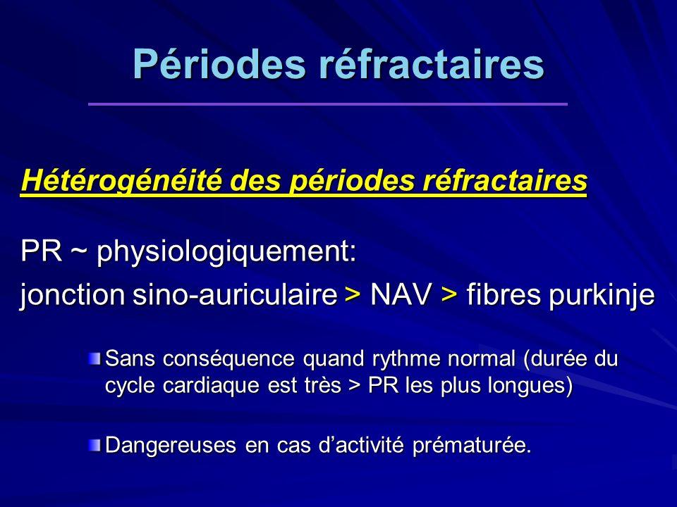 Périodes réfractaires Hétérogénéité des périodes réfractaires PR ~ physiologiquement: jonction sino-auriculaire > NAV > fibres purkinje Sans conséquence quand rythme normal (durée du cycle cardiaque est très > PR les plus longues) Dangereuses en cas dactivité prématurée.