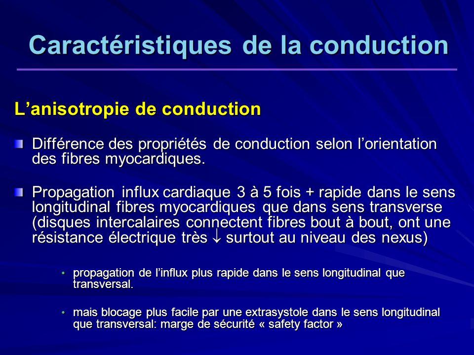 Caractéristiques de la conduction Lanisotropie de conduction Différence des propriétés de conduction selon lorientation des fibres myocardiques.