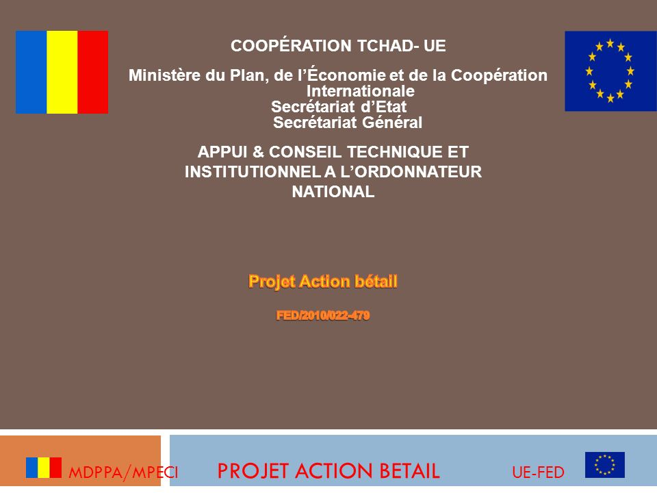 Objectif global : Contribuer à la sécurité alimentaire des populations vulnérables dépendant de lélevage au Tchad MDPPA /MPECI PROJET ACTION BETAIL UE-FED