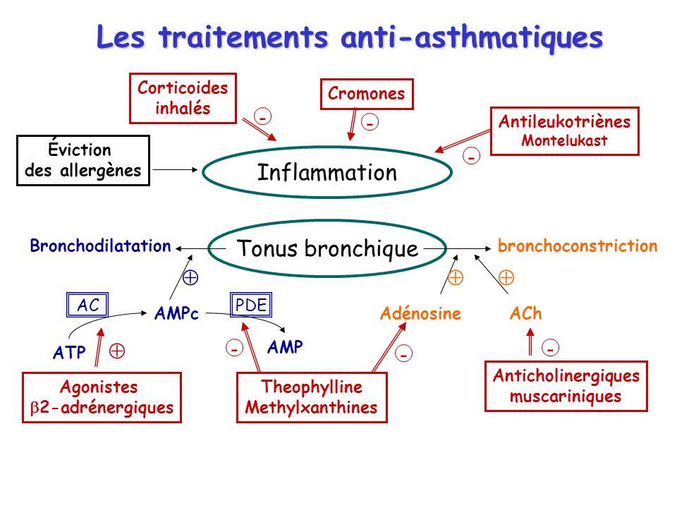 Les traitements anti-asthmatiques Inflammation Tonus bronchique Bronchodilatationbronchoconstriction ACh Adénosine AMPc ATP AMP ACPDE Agonistes 2-adrénergiques Theophylline Methylxanthines Anticholinergiques muscariniques Corticoides inhalés Cromones Antileukotriènes Montelukast Éviction des allergènes - - - - - -