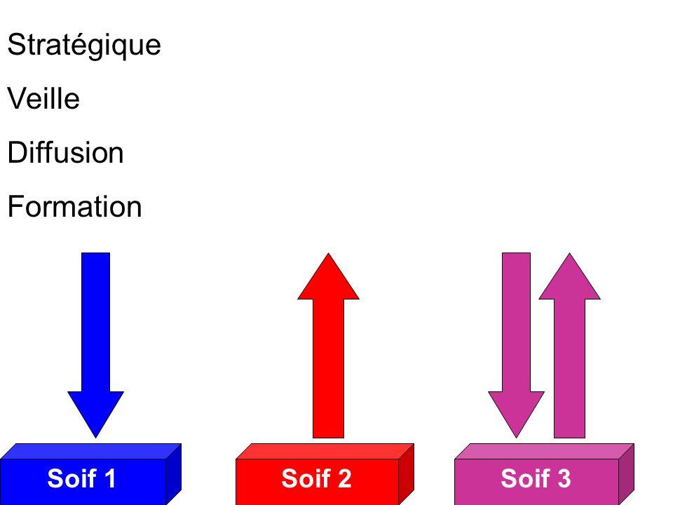 Soif 2Soif 3Soif 1 Soifs 3 Stratégique Veille Diffusion Formation