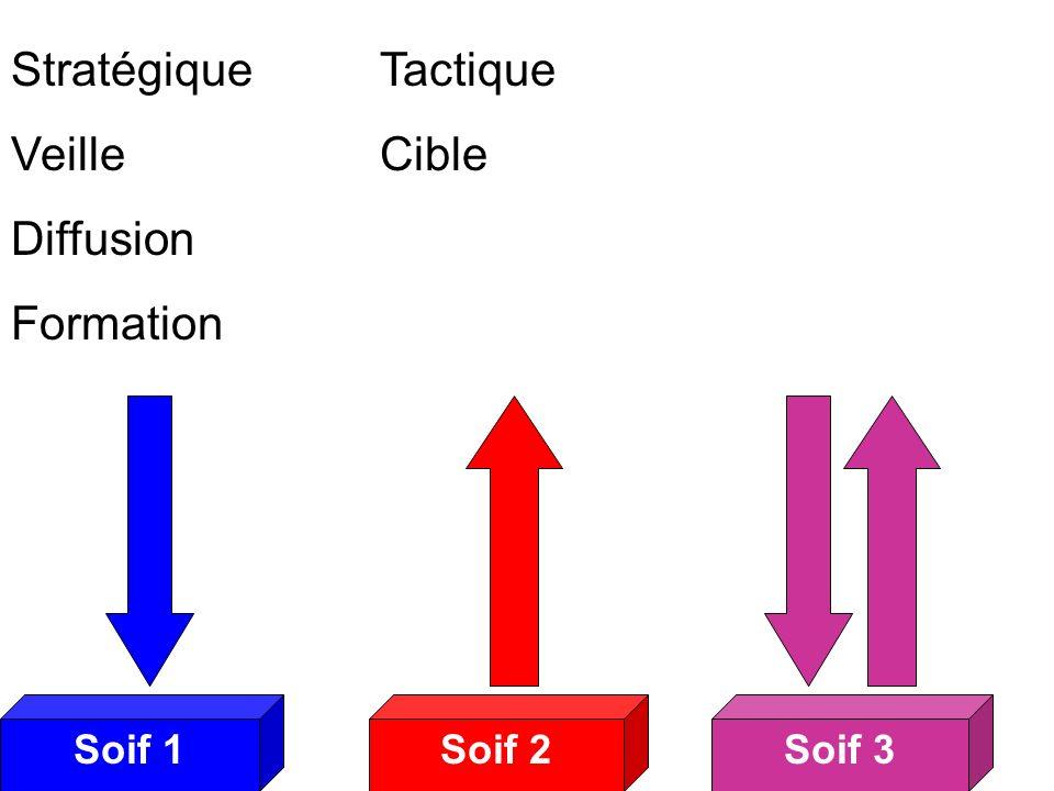 Soif 2Soif 3Soif 1 Soifs 3 Stratégique Veille Diffusion Formation Tactique Cible