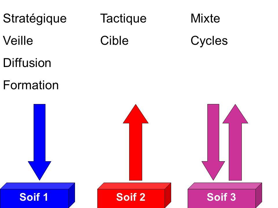 Soif 2Soif 3Soif 1 Soifs 3 Stratégique Veille Diffusion Formation Tactique Cible Mixte Cycles