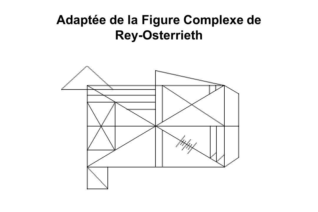 Adaptée de la Figure Complexe de Rey-Osterrieth