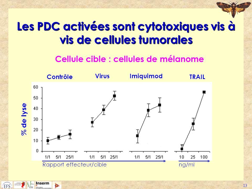 13 Les PDC activées sont cytotoxiques vis à vis de cellules tumorales % de lyse Virus TRAILContrôle Cellule cible : cellules de mélanome Imiquimod Rap