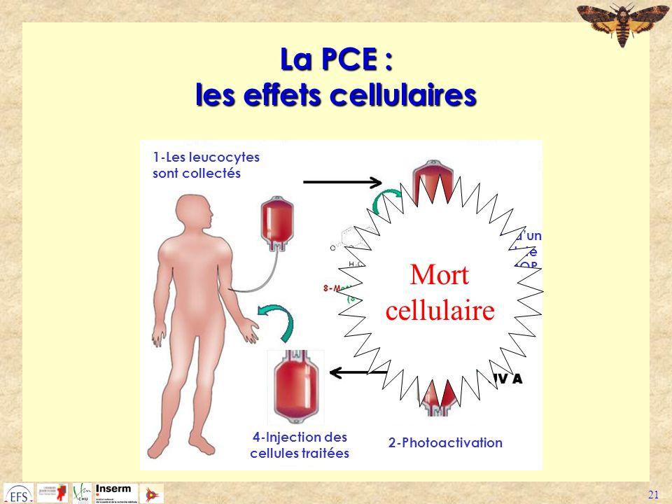 21 La PCE : les effets cellulaires 1-Les leucocytes sont collectés 2-Addition dun intercalent de lADN : 8-MOP 2-Photoactivation 4-Injection des cellul