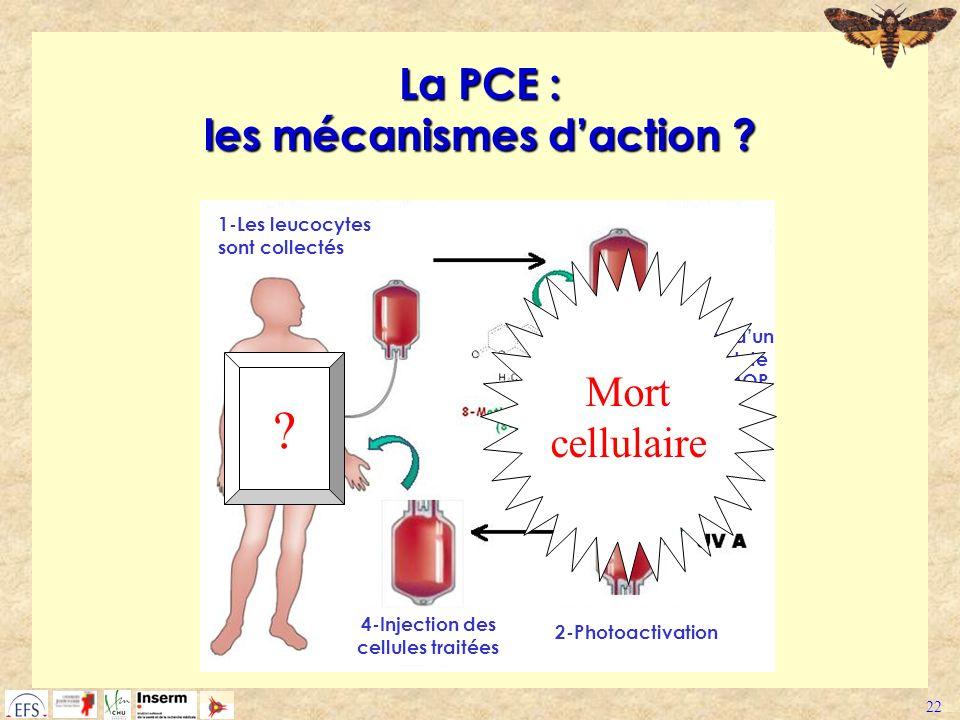22 La PCE : les mécanismes daction ? 1-Les leucocytes sont collectés 2-Addition dun intercalent de lADN : 8-MOP 2-Photoactivation 4-Injection des cell