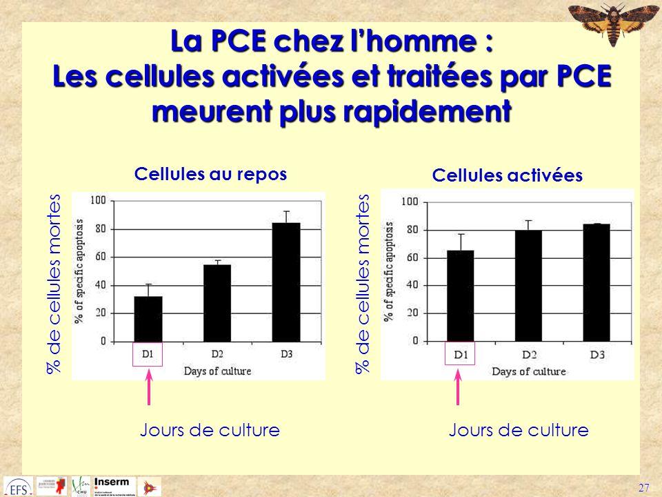 27 La PCE chez lhomme : Les cellules activées et traitées par PCE meurent plus rapidement % de cellules mortes Jours de culture % de cellules mortes J
