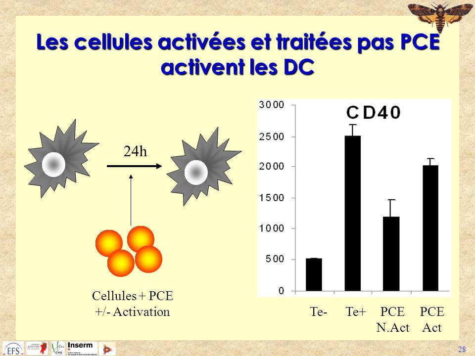 28 Les cellules activées et traitées pas PCE activent les DC Cellules + PCE +/- Activation 24h Te-Te+PCE N.Act PCE Act