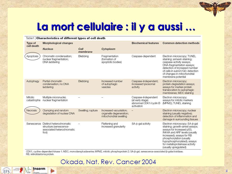 4 La mort cellulaire : il y a aussi … Okada, Nat. Rev. Cancer 2004