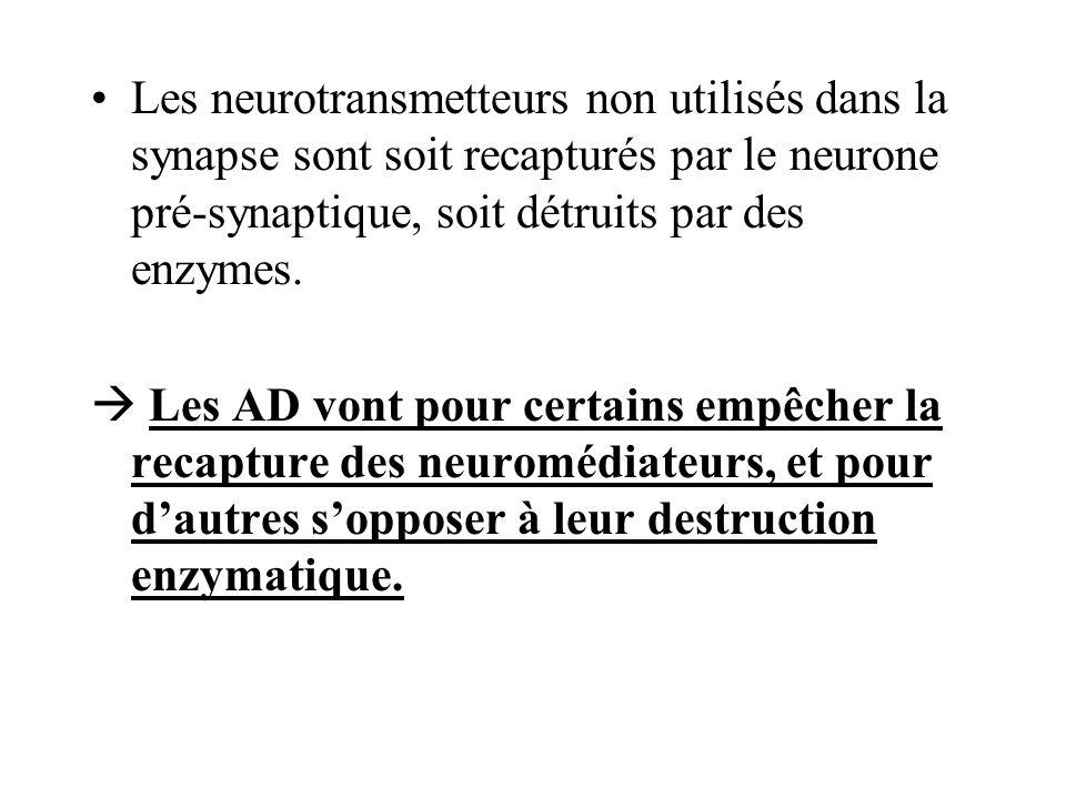 Les neurotransmetteurs non utilisés dans la synapse sont soit recapturés par le neurone pré-synaptique, soit détruits par des enzymes. Les AD vont pou