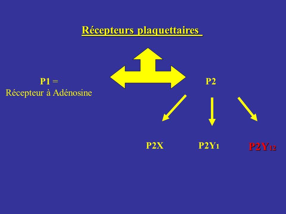 Récepteurs plaquettaires P1 = Récepteur à Adénosine P2 P2XP2Y 1 P2Y 12