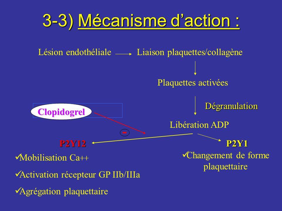 3-3) Mécanisme daction : Lésion endothélialeLiaison plaquettes/collagène Plaquettes activées Dégranulation Libération ADP P2Y12 Mobilisation Ca ++ Act
