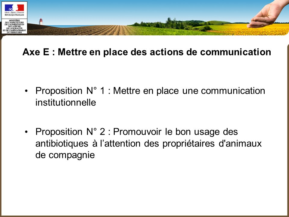 Axe E : Mettre en place des actions de communication Proposition N° 1 : Mettre en place une communication institutionnelle Proposition N° 2 : Promouvoir le bon usage des antibiotiques à lattention des propriétaires d animaux de compagnie