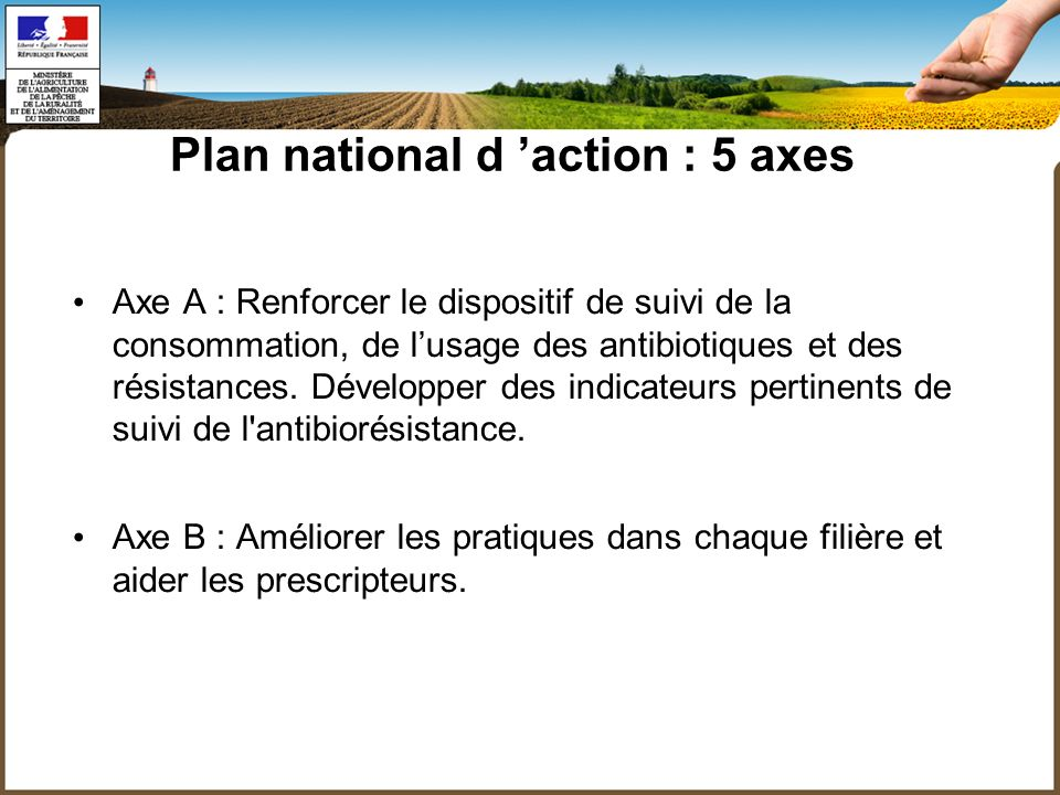 Plan national d action : 5 axes Axe A : Renforcer le dispositif de suivi de la consommation, de lusage des antibiotiques et des résistances.