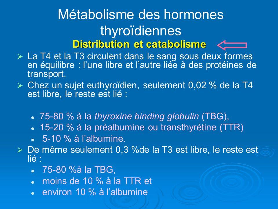 Métabolisme des hormones thyroïdiennes Distribution et catabolisme La T4 et la T3 circulent dans le sang sous deux formes en équilibre : lune libre et lautre liée à des protéines de transport.