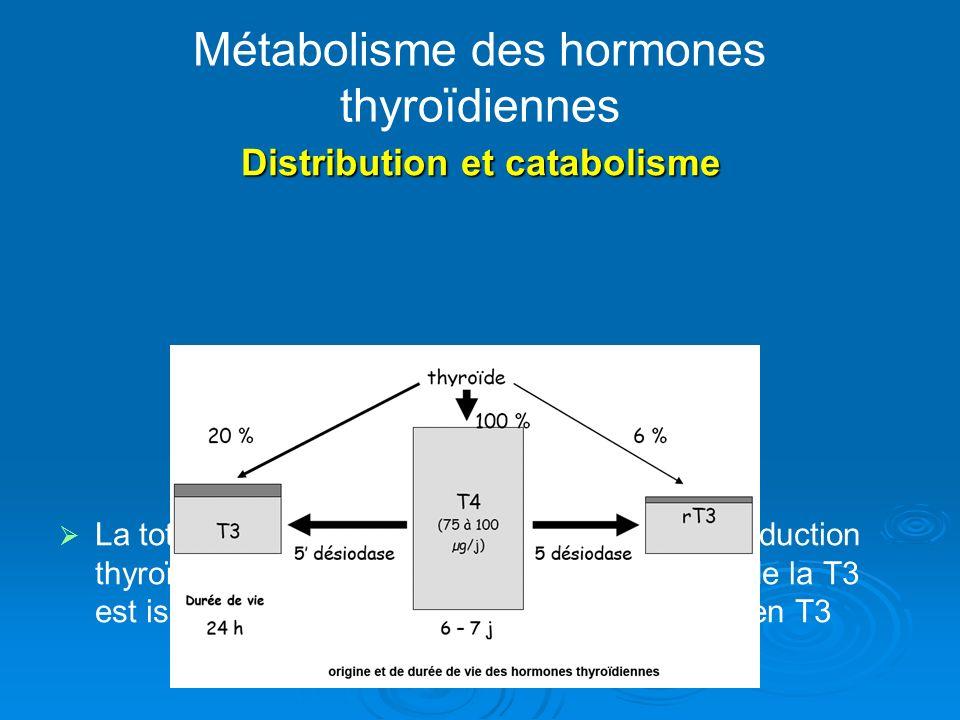 Métabolisme des hormones thyroïdiennes Distribution et catabolisme La totalité de la T4 circulante provient de la production thyroïdienne, tandis que la plus grande partie de la T3 est issue de la conversion périphérique de T4 en T3