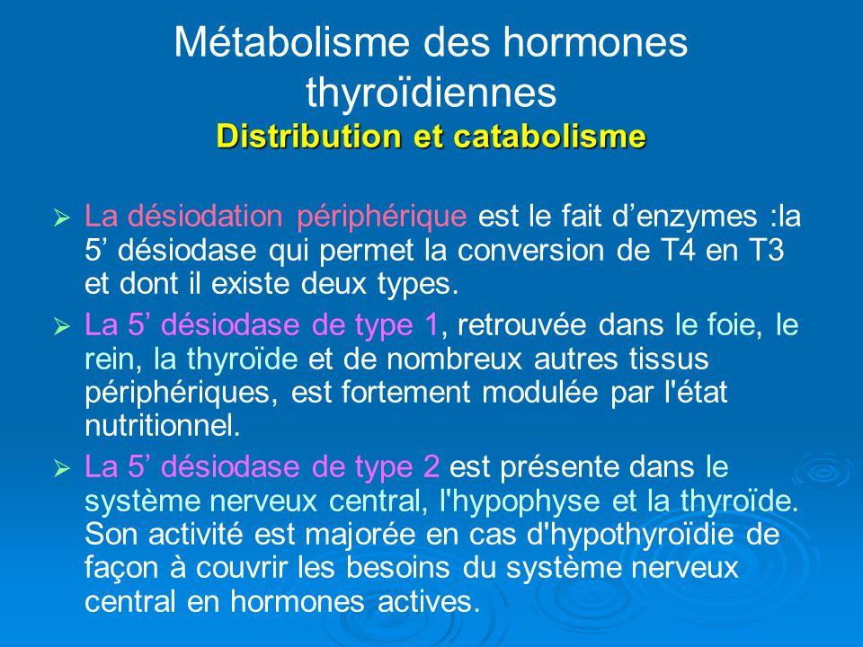 Métabolisme des hormones thyroïdiennes Distribution et catabolisme La désiodation périphérique est le fait denzymes :la 5 désiodase qui permet la conversion de T4 en T3 et dont il existe deux types.