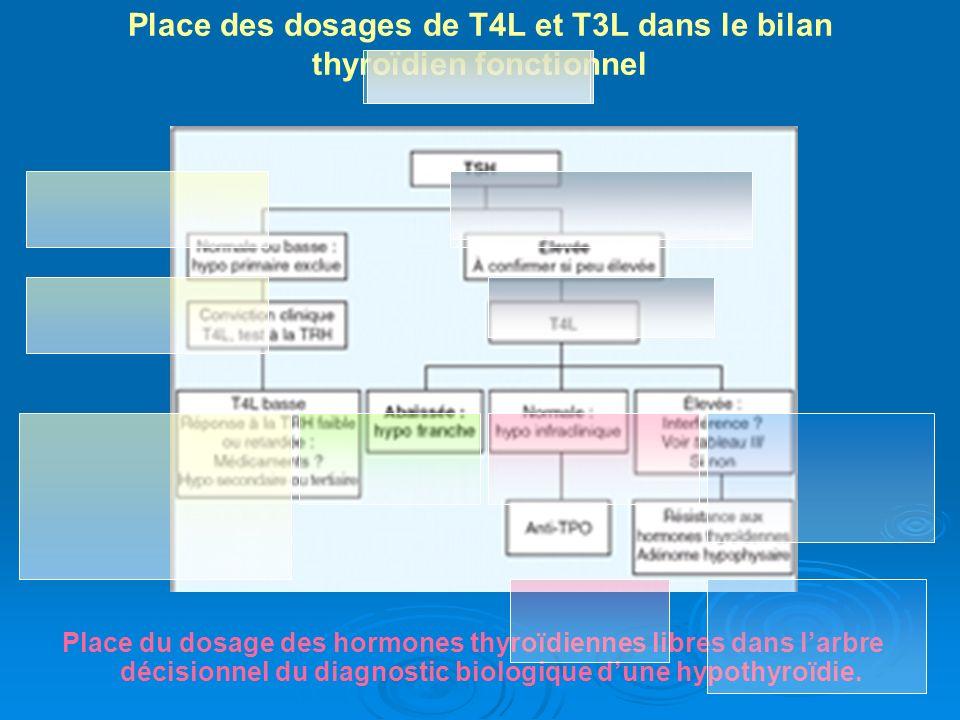 Place du dosage des hormones thyroïdiennes libres dans larbre décisionnel du diagnostic biologique dune hypothyroïdie. Place des dosages de T4L et T3L