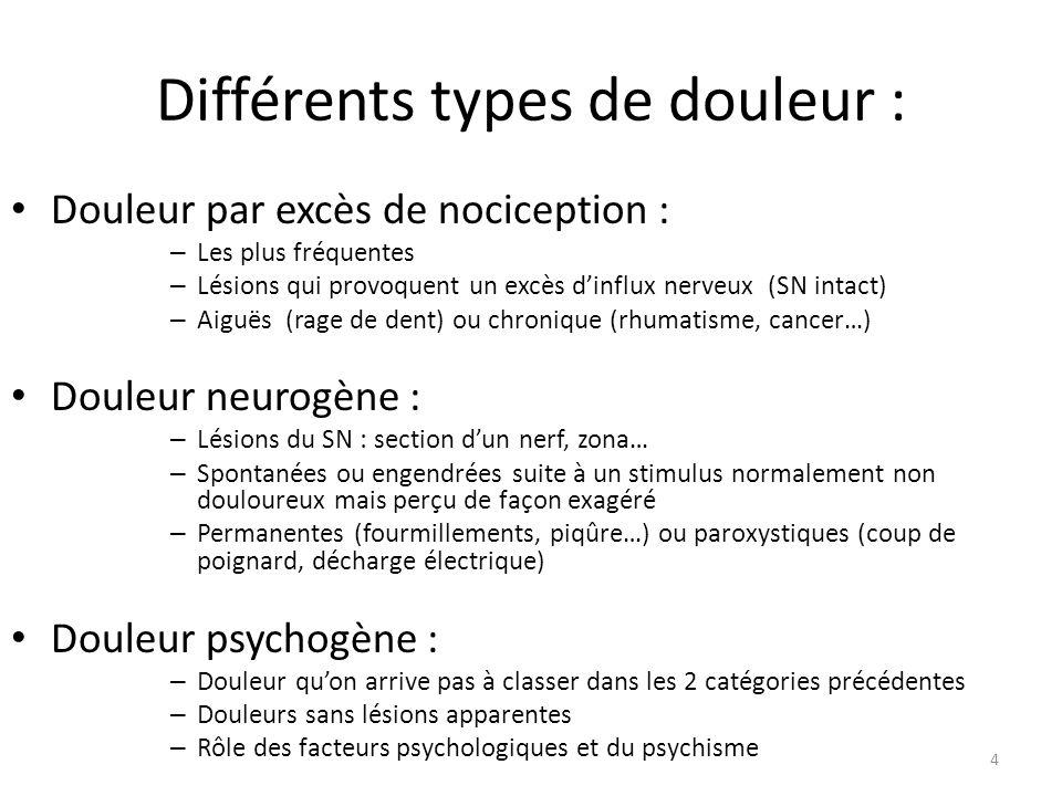 Différents types de douleur : Douleur par excès de nociception : – Les plus fréquentes – Lésions qui provoquent un excès dinflux nerveux (SN intact) –