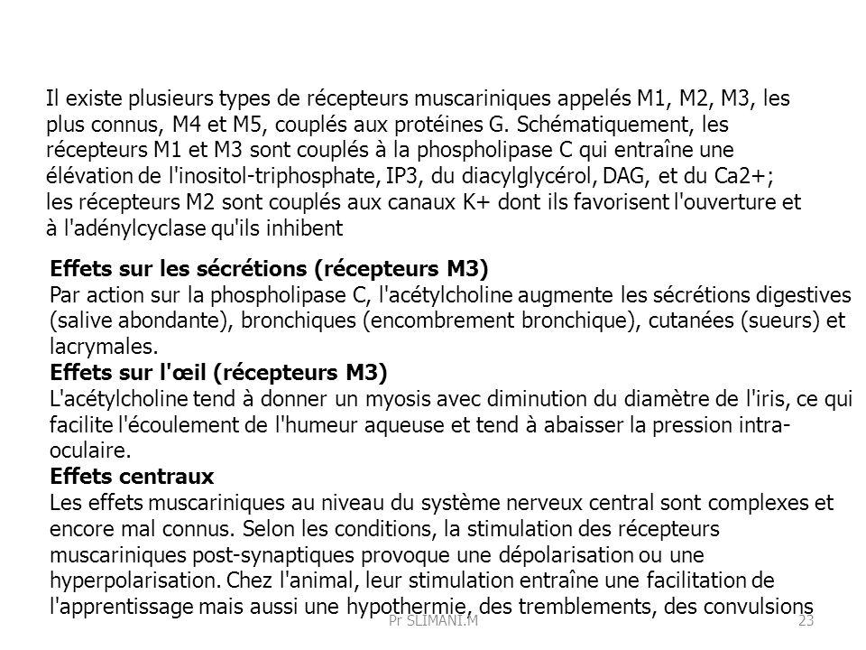 Effets sur les sécrétions (récepteurs M3) Par action sur la phospholipase C, l'acétylcholine augmente les sécrétions digestives (salive abondante), br
