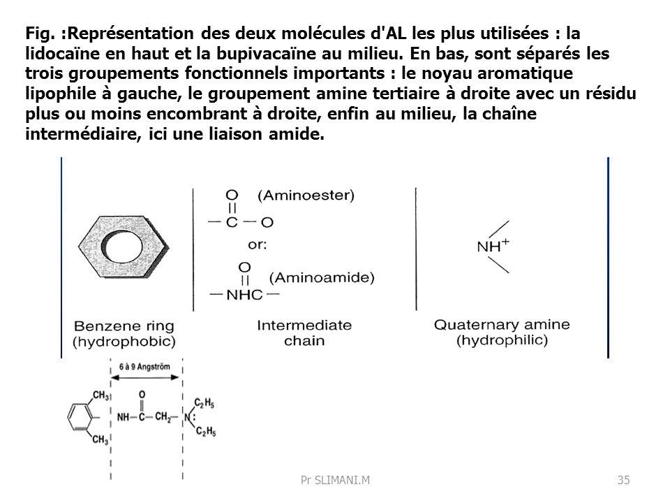 Fig. :Représentation des deux molécules d'AL les plus utilisées : la lidocaïne en haut et la bupivacaïne au milieu. En bas, sont séparés les trois gro