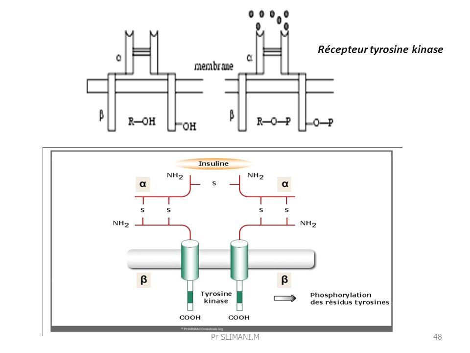 Récepteur tyrosine kinase 48Pr SLIMANI.M